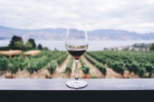 ワイングラスと葡萄畑